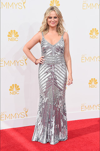 Amy Poehler in Thela Photo: Getty Images found on www.style.com