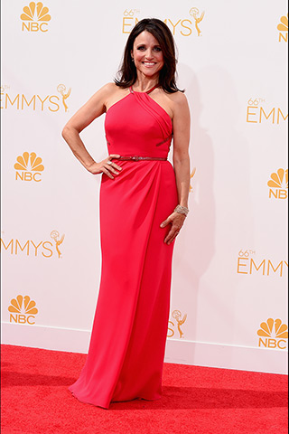Julia Louis-Dreyfus Dress: Carolina Herrera Photo: Getty Images found on www.style.com